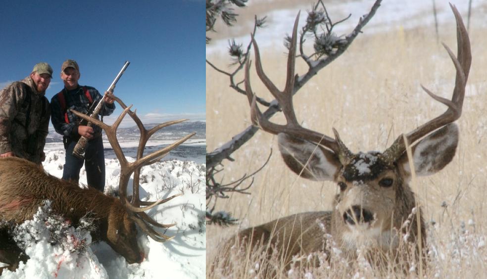 Hlrbo Daggett Utah Hunting Lease 2 495 00 Per Day